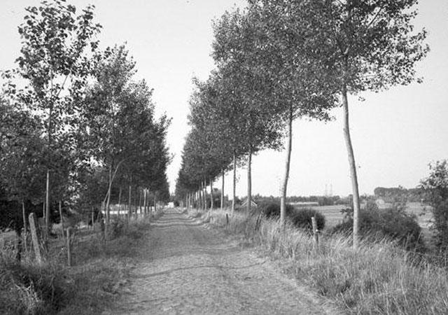 Boerderij De Schouwse Hoeve Daleboutsweg Burgh-Haamstede Zeeland